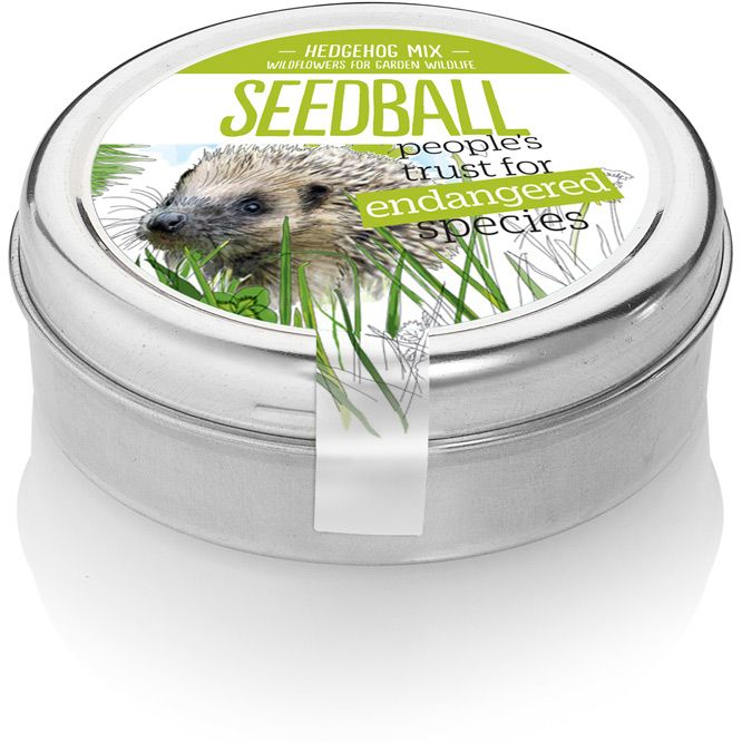 Hedgehog Mix Seedballs