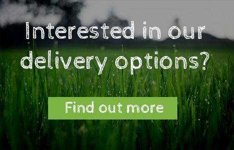 Interested in our delivery options